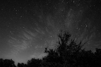 Photograph - Trees Silhouetted By The Stars by Nathan Hillis