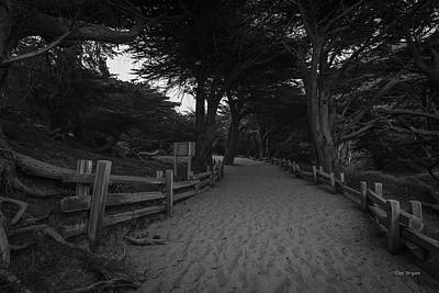 Photograph - Trekking Back-  Big Sur by Tim Bryan