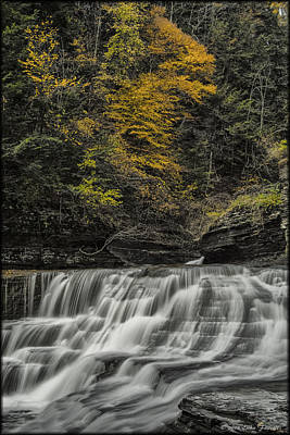 Photograph - Treman Gorge by Erika Fawcett