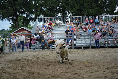 Rodeo Photograph - Tremendously Insane by Gary Keesler