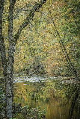 Photograph - Tremont Prong Reflection by David Waldrop