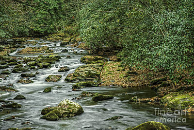 Photograph - Tremont River by David Waldrop