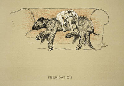 Wolfhound Drawing - Trepidation, 1930, 1st Edition by Cecil Charles Windsor Aldin
