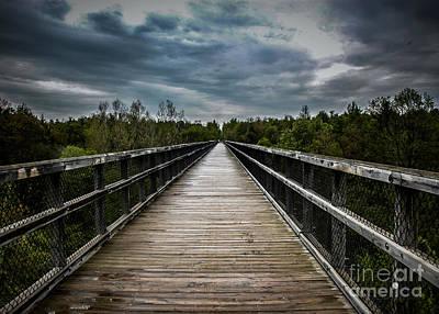 Photograph - Trestle Bridge by Ronald Grogan