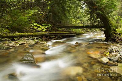 Respite Photograph - Trestle Creek by Idaho Scenic Images Linda Lantzy