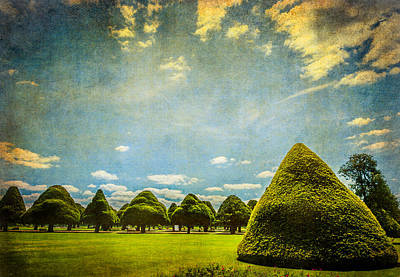 Photograph - Triangular Trees 001 by Lenny Carter