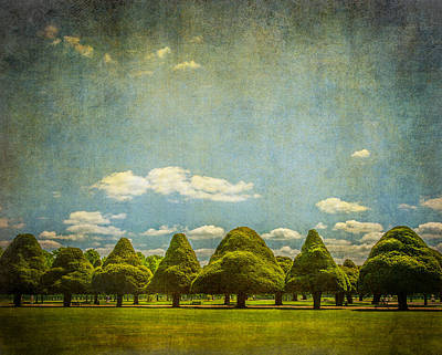 Photograph - Triangular Trees 003 by Lenny Carter