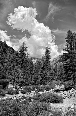 Photograph - tribute to Ansel Adams by Peggy Hughes