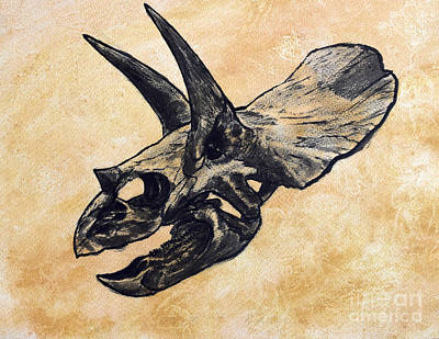 One Animal Digital Art - Triceratops Dinosaur Skull by Harm Plat