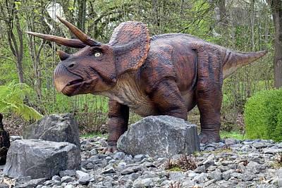 Triceratops Model I Art Print by Dirk Wiersma
