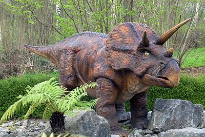 Triceratops Model II Art Print