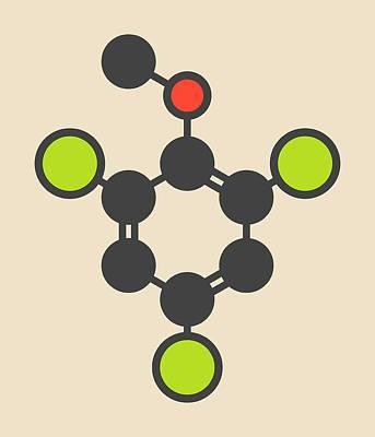 Trichloroanisole Cork Taint Molecule Art Print by Molekuul