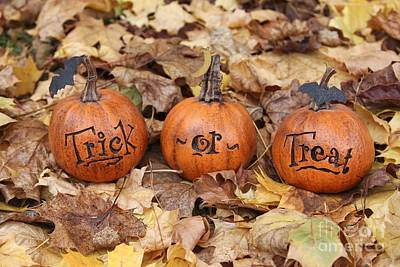 Photograph - Trick Or Treat by Karin Pinkham