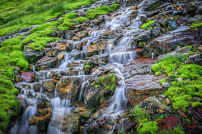 Trickle Trickle 2 Waterfall Glacier National Park Art Print by Rich Franco