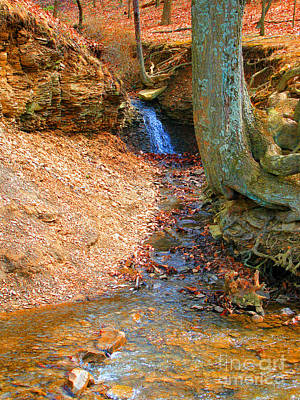 Trickling Waterfall By Shellhammer Art Print