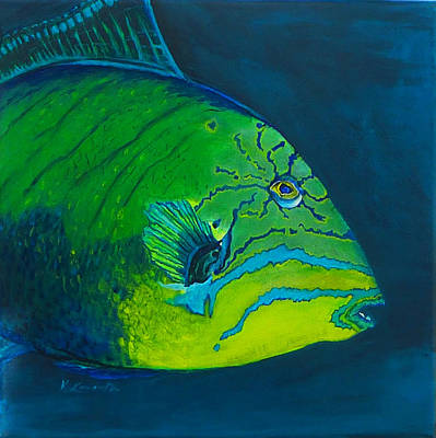 Triggerfish Painting - Triggerfish by Kevin Lancaster