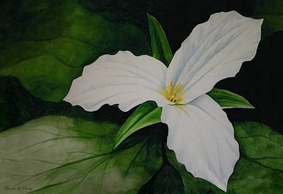 Painting - Trillium by Charles Owens