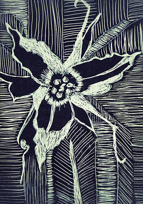 Drawing - Trillium In Black And White by Patricia Januszkiewicz