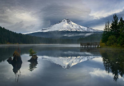 Trillium Reflections Art Print by David  Forster