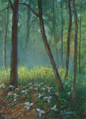 Trillium Trail Art Print by Linda Preece