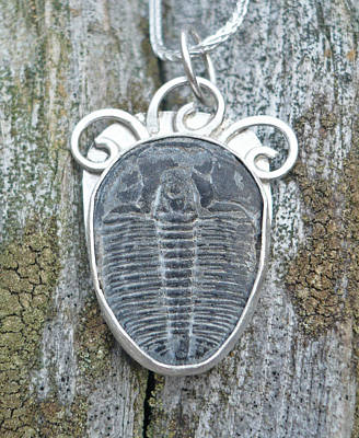 Jewelry - Trilobite With Spirals by Arianna Bara