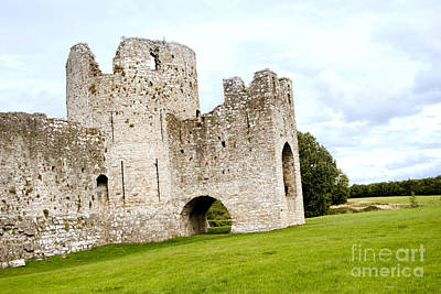 Digital Art - Trim Castle Meath Ireland by Danielle Summa