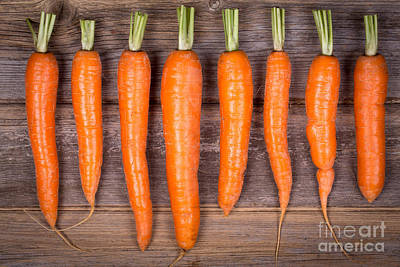 Ripe Photograph - Trimmed Carrots In A Row by Jane Rix