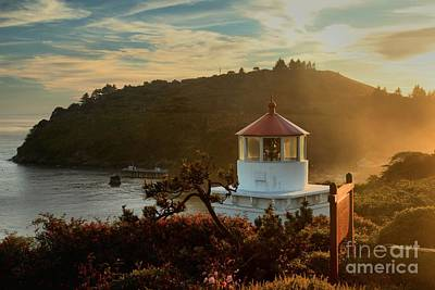 Photograph - Trinidad Fog Light by Adam Jewell