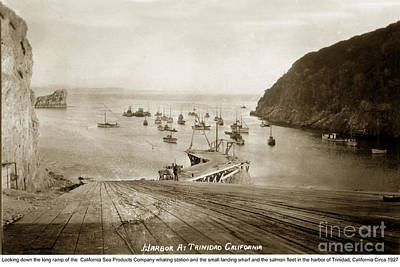 Photograph - Trinidad Harbor And Fishing Fleet California Circa 1927  by California Views Archives Mr Pat Hathaway Archives