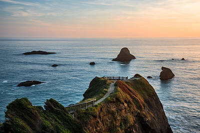 Photograph - Trinidad Ocean Viewpoint by Leland D Howard