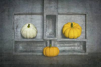 Pumpkin Photograph - Trio's IIi by Luc Stalmans