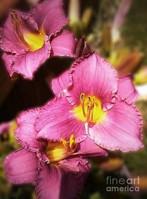Triple Lilies Art Print