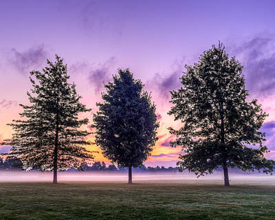 Foggy Photograph - Triplets In Morning Fog by Chris Bordeleau