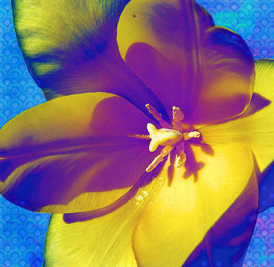 Digital Art - Trippy Tulip by Shawna Rowe