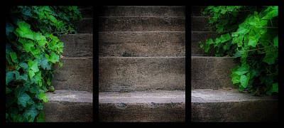 Photograph - Triptych Ivy Steps by Steve Hurt