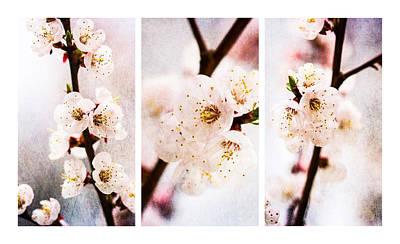 Triptych Light Of Spring 2 Art Print by Alexander Senin