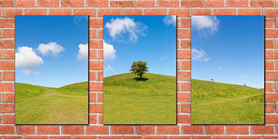 Photograph - Triptych Of Nature by Semmick Photo