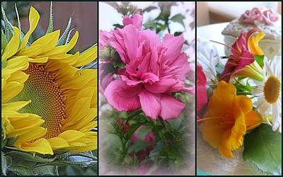 Rose Of Sharon Tree Photograph - Triptych Of Summer Florals by Kay Novy