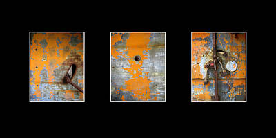 Photograph - Triptych Old Metal Series by Ann Powell