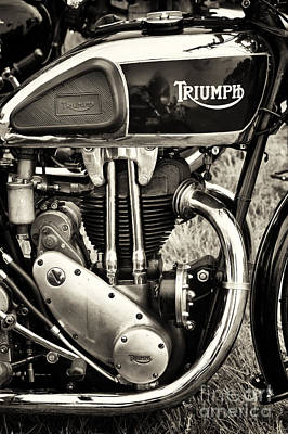 Photograph - Triumph Tiger 80 Sepia by Tim Gainey