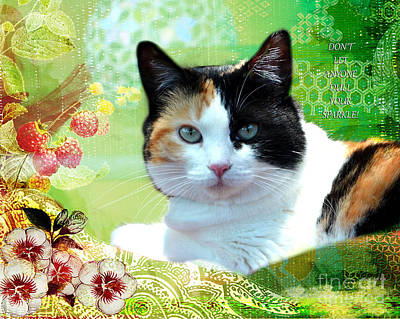 Photograph - Trixie Greeting Card by Linda Cox
