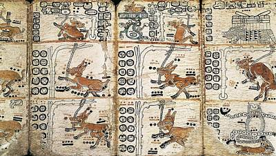 Precolumbian Photograph - Trocortesian Or Madrid Codex. S.xiv by Everett