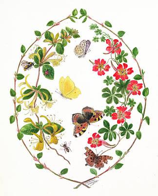 Honeysuckle Photograph - Tropeolium And Lonicera Wc On Paper by Ursula Hodgson