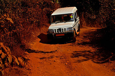 Photograph - Trophy In The Jungles. Goa. India by Jenny Rainbow