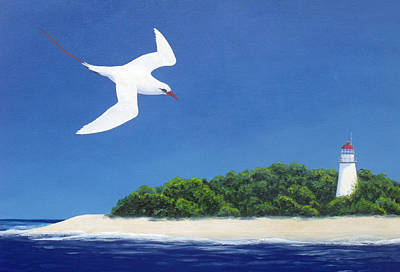 Painting - Tropic Bird And Light House by David Clode