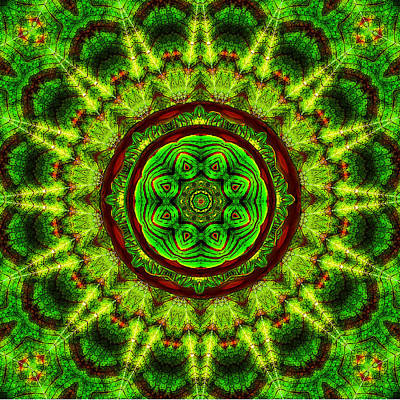 Canna Digital Art - Tropic Leaf Pattern Mandala by Deborah Smith
