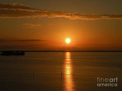 Photograph - Tropic Sun by Lora Duguay