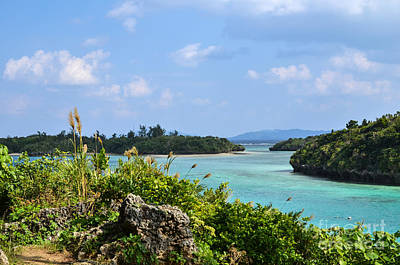 Photograph - Tropical Bay by Kennerth and Birgitta Kullman