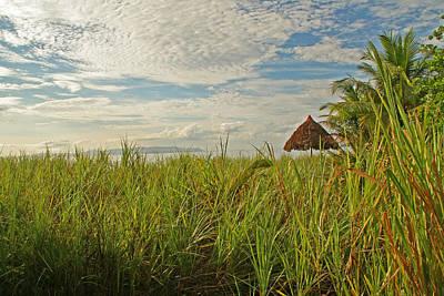Photograph - Tropical Beach Landscape by Peggy Collins