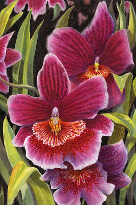 Tropical Plant Painting - Tropical Beauties 2 by Karen Wright